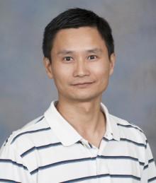 Yang Yang, PhD